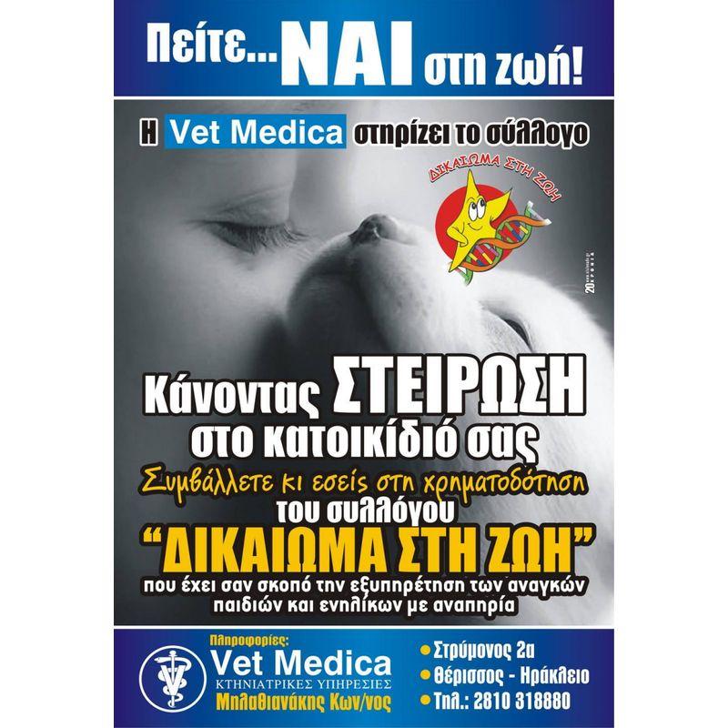Αφίσες - afs2536